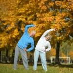 Senior couple exercising in  park — Stock Photo #73670979