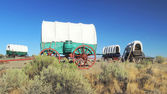 Covered Wagon Train Circled In Camp Along The Oregon Trail — Stock Photo