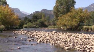 Mountain Stream in Fall — Stock Video