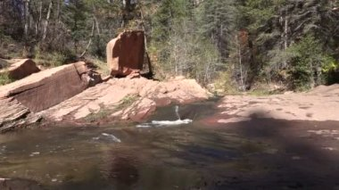 Scenic Wilderness Stream — Stock Video