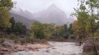 Watchman and Virgin River Zion N.P. — Stock Video