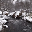 Stream flowing Through Wintery Landscape — Stock Video #61396357