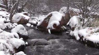 Stream flowing Through Wintery Landscape — Stock Video