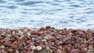 Sea coast with blue water of  sea close up — Stock Video