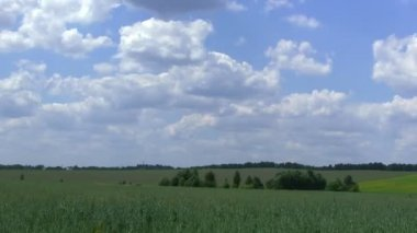 Rural landscape with  field and clouds.  PAL Time lapse — Stock Video