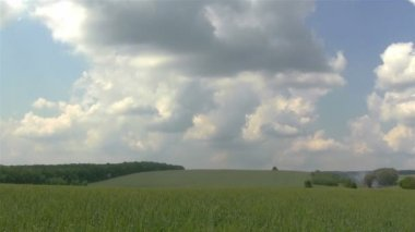 Landscape with  wheat field and clouds. PAL Time lapse — Stock Video