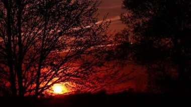 Sunrise  in red sky  color and tree.   time lapse clip — Vídeo de Stock