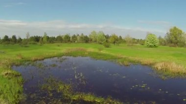 Small lake on  meadow and  blossoming tree. Aerial — Vídeo de Stock