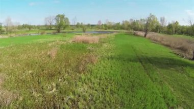 Slow Flight over  spring meadow and  lake. Aerial — Stock Video