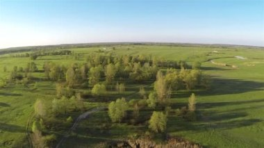 Flight overe wood and  field. Camera lowering. Aerial — Stock Video