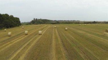 Agrarlandschaft mit Heu. Antenne, die langsam — Stockvideo