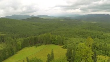 Lateral   Fly over mountain with wood  ( hills)    .Aerial  shot landscape — Video Stock