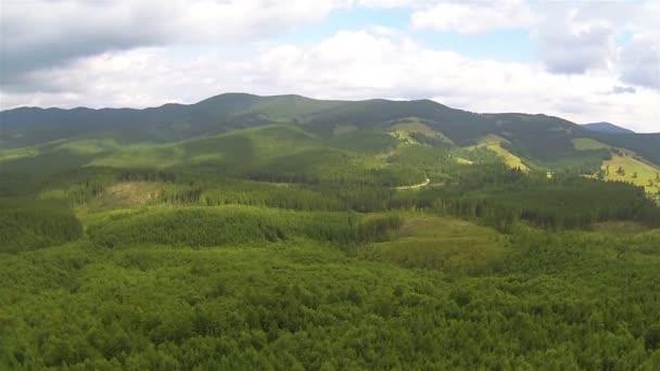 Madera en las montañas y las nubes. Hermoso paisaje. Panorama aéreo — Vídeo de stock