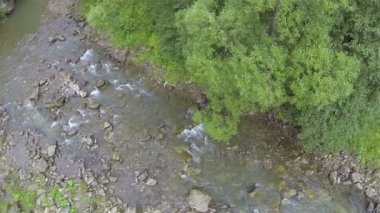 Flight over small mountain river . Aerial  top view — Stock Video