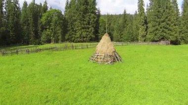 Haystack on  green meadow. Aerial  shot — Stock Video