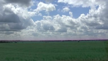 Beautiful clouds over  green field. Landscape, time lapse — Stock Video
