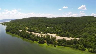 Beautiful sea coast with wood. Aerial summer landscape — Stock Video