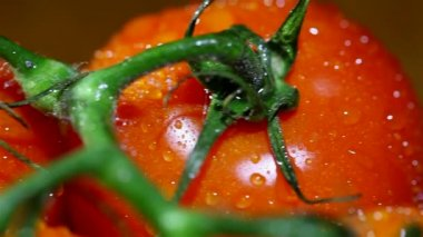 Bright  red tomatoes with water drops. Slider  macro shot — Vídeo de Stock