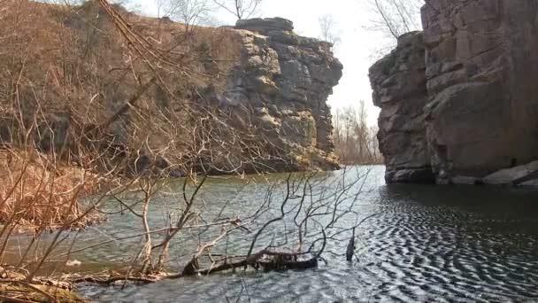 Árbol y río en el cañón. Panorama — Vídeo de stock