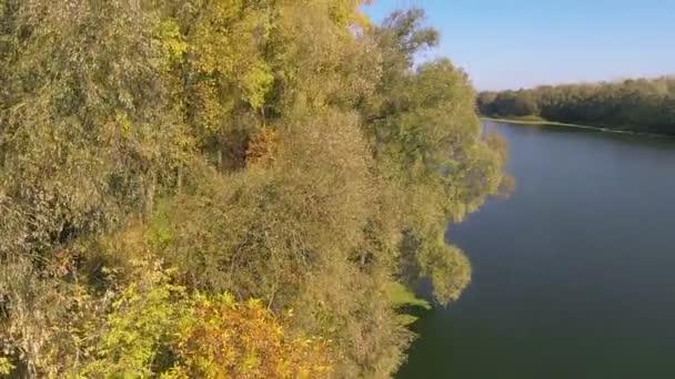 Corteja a volar para arriba sobre el otoño y el río. Toma aérea — Vídeo de stock