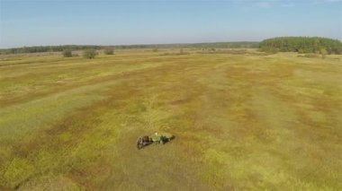 Horse with  hay cart in  field. Aerial  shot in sunny day — Stock Video
