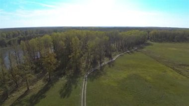 Wood  and dirt road in meadow near river. Aerial  shot — Stock Video