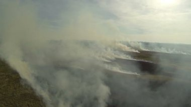 Flight through  fire smoke in  steppe. Aerial shot — Stock Video