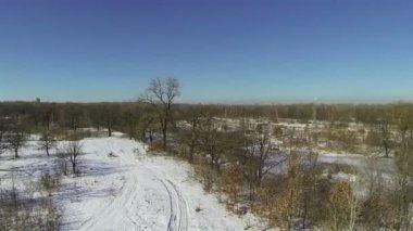 Rio pequeno congelado em campo. Aérea — Vídeo stock