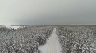 Winter forest with  empty road in gloomy weather. Aerial shot — ストックビデオ