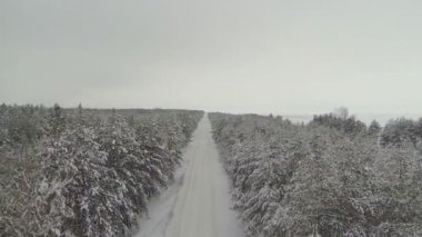 Snow-covered empty road and wood. Aerial winter shot — Stock Video