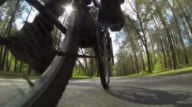Bicycle goes on asphalt road in  wood. POV clip — Stockvideo