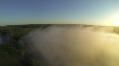 Very beautiful  fly over  wood and  fog in sunlight . Aerial — Stock Video