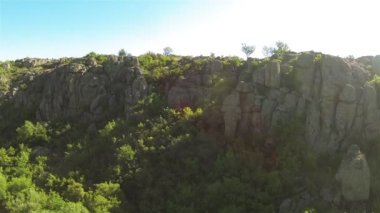 Fly inside  canyon  with trees , river and rocks. Aerial  low height — Stock Video