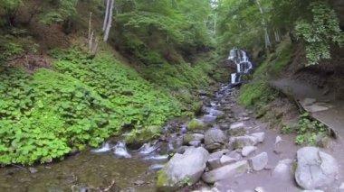 Sur le ruisseau de montagne avec chute d'eau à faible hauteur. Prise de vue aérienne — Vidéo