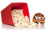 Hamster in 3d glasses chewing popcorn. — Stock Photo