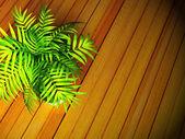 Yerdeki yeşil bir bitki — Stok fotoğraf