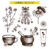 Vintage collection of graphic chamomile flowers — Stock Vector