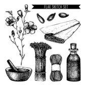 Vintage flax sketch — Stock Vector
