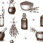 Ink hand drawn lavender illustration — Stock Vector #74122673