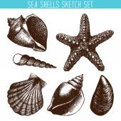 Hand drawn pattern with sea shells — Stock Vector
