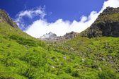 Active volcano Mt. Yakedake — Stock Photo