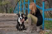 Leggy blonde woman stroking a purebred dog on the bridge — Stock Photo