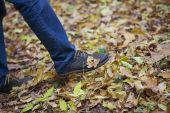 Fallen leaf on men's oxfords — Stock Photo