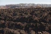 Black soil plowed field — Stock Photo