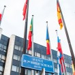 Постер, плакат: Exterior of Council of Europe with all European Union Member Fla