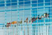 Flags reflected in European Parliament — Stockfoto