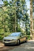 Hybrid Volvo S60 executive car parked in the middle of green for — Stock Photo