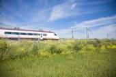Train over flowers — Stock Photo