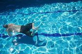 Man swimming — Stock Photo