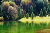 Kaindy green Lake in Tien Shan mountain, Kazakhstan. Autumn — Foto Stock